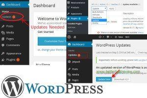 WordPress Update Service