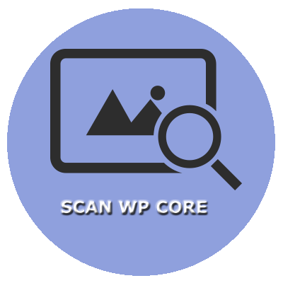WP CORE SCANS